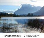 beautiful canadian landscape ... | Shutterstock . vector #775029874