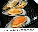 fresh seafood. grab  shell ... | Shutterstock . vector #775055233