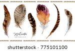 watercolor hand drawn paintings ... | Shutterstock . vector #775101100