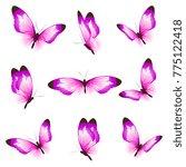 beautiful pink butterflies ... | Shutterstock . vector #775122418