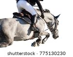 equestrian sports  horse... | Shutterstock . vector #775130230