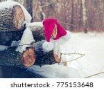 The Forgotten Santa Claus Hat...