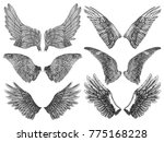 heraldic wings set for tattoo... | Shutterstock .eps vector #775168228