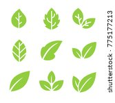 leaves icon vector set | Shutterstock .eps vector #775177213