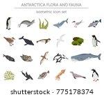 isometric 3d antarctica flora... | Shutterstock .eps vector #775178374