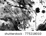 black and white abstract... | Shutterstock . vector #775218010