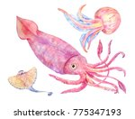 squid  batoidea  jellyfish. sea ... | Shutterstock . vector #775347193