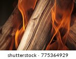 Piece Of Wood Burning In Fire...