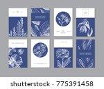 set of creative universal... | Shutterstock .eps vector #775391458
