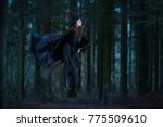 witch flying on a broom in the... | Shutterstock . vector #775509610