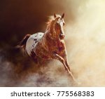 action horse portrait  | Shutterstock . vector #775568383