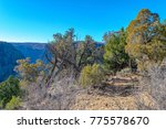 black canyon of the gunnison... | Shutterstock . vector #775578670