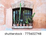 old abandoned window with group ... | Shutterstock . vector #775602748