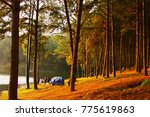 tents at pang ung | Shutterstock . vector #775619863