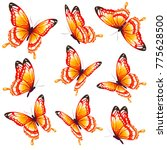 beautiful orange butterflies ... | Shutterstock .eps vector #775628500