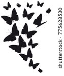 black butterfly  isolated on a... | Shutterstock .eps vector #775628530