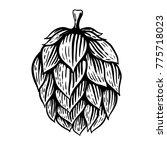 beer hop illustration in... | Shutterstock .eps vector #775718023