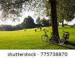 picnic in the park | Shutterstock . vector #775738870