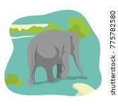 elephant cartoon character | Shutterstock .eps vector #775782580
