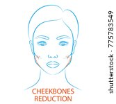 vector illustration  blue...   Shutterstock .eps vector #775783549