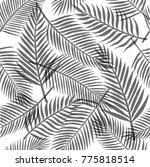 black and white tropical leaves ... | Shutterstock .eps vector #775818514