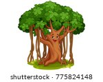 cute banyan tree cartoon... | Shutterstock .eps vector #775824148