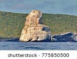 las monas off isla isabel ... | Shutterstock . vector #775850500