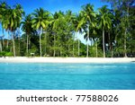 Coconut Palm Trees With Blue Sea