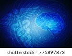 human brain 2d illustration | Shutterstock . vector #775897873