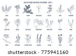hand drawn set of culinary... | Shutterstock .eps vector #775941160