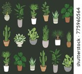 set of house indoor plant... | Shutterstock .eps vector #775960564