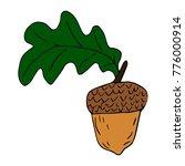 acorn vector illustration   Shutterstock .eps vector #776000914