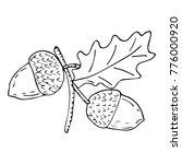 acorn vector illustration....   Shutterstock .eps vector #776000920
