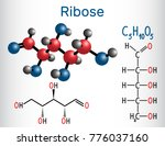 linear form  acyclic  of ribose ...   Shutterstock .eps vector #776037160
