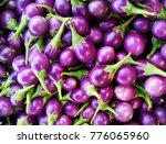 close up of the purple eggplants | Shutterstock . vector #776065960