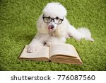a white dog with a glass on a... | Shutterstock . vector #776087560