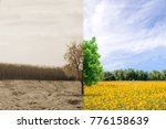 ecology concept change tree... | Shutterstock . vector #776158639