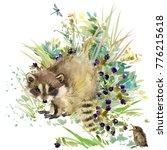 raccoon. forest animals... | Shutterstock . vector #776215618