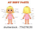 my body parts girl illustration ... | Shutterstock .eps vector #776278150