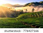 light morning mist the... | Shutterstock . vector #776427166