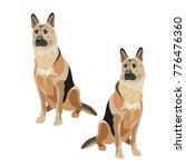 east european shepherd dogs.... | Shutterstock .eps vector #776476360