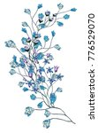 watercolor drawing of twig with ...   Shutterstock . vector #776529070