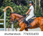 bay dressage horse and... | Shutterstock . vector #776531653
