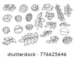 great collection of highly... | Shutterstock .eps vector #776625646