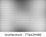 points halftone background.... | Shutterstock .eps vector #776629480