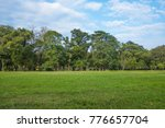 Small photo of Lawn, trees, clouds, with against clear blue sky and could.
