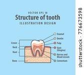 cross section structure inside... | Shutterstock .eps vector #776673598