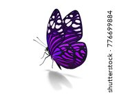 beautiful colorful butterfly... | Shutterstock . vector #776699884