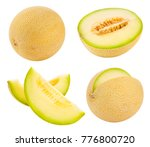 cantaloupe melon isolated on... | Shutterstock . vector #776800720