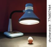 Small photo of The lamp warms the egg of a new business idea